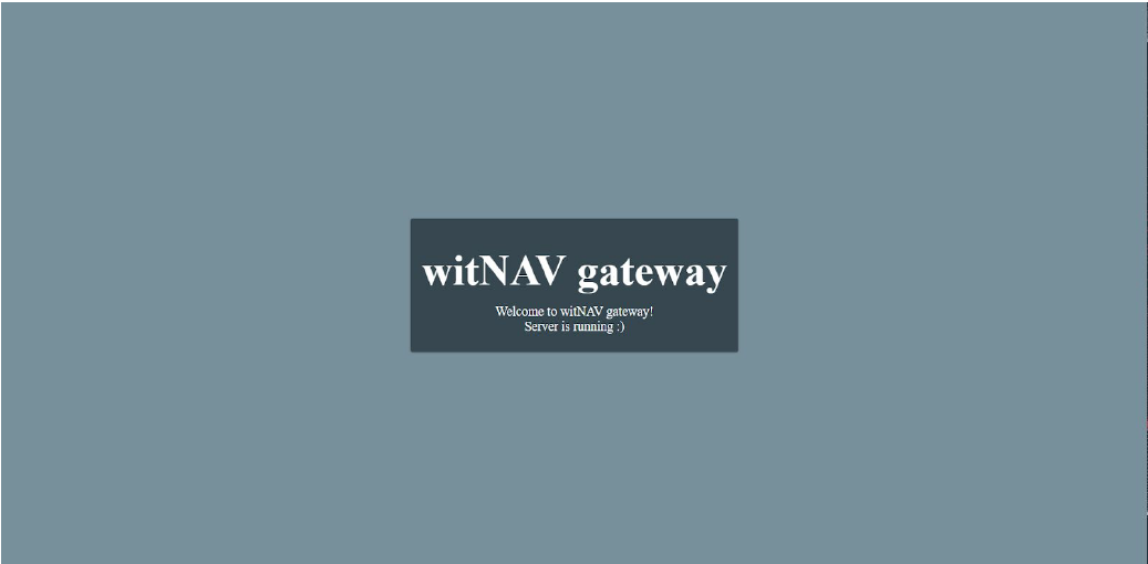 witNAV gateway is running on browser
